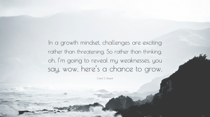 1176251-Carol-S-Dweck-Quote-In-a-growth-mindset-challenges-are-exciting.jpg